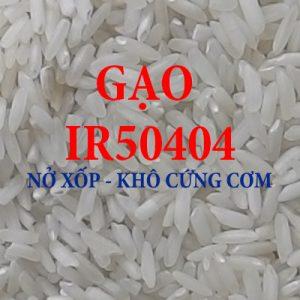 gạo để sản xuất bánh, làm bún