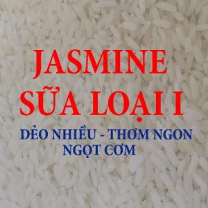 GAO JASMINE SỮA THƠM – LOAI I