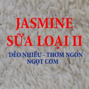 GẠO JASMINE SỮA THƠM – LOẠI II