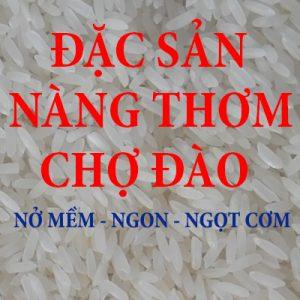 Gạo Thơm Chợ đào - lúa 6 tháng
