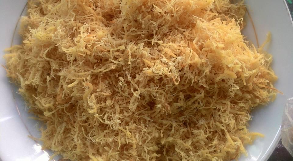 Chà Bông Gà Dầu - Chà Bông Bánh Mì Giá Rẻ